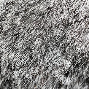Портновская мастерская пошив из меха Кролик